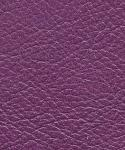 Stargo-PurplePrize.jpg